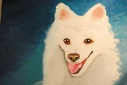 Just a White Dog